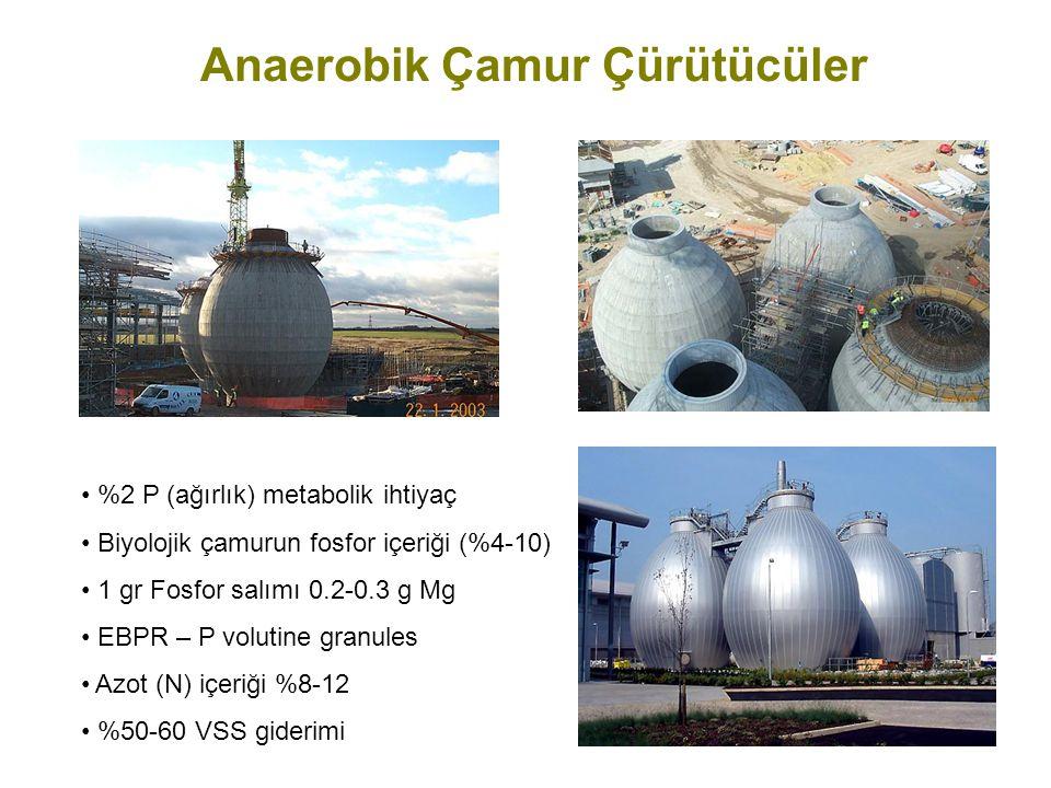 Anaerobik Çamur Çürütücüler %2 P (ağırlık) metabolik ihtiyaç Biyolojik çamurun fosfor içeriği (%4-10) 1 gr Fosfor salımı 0.2-0.3 g Mg EBPR – P volutin