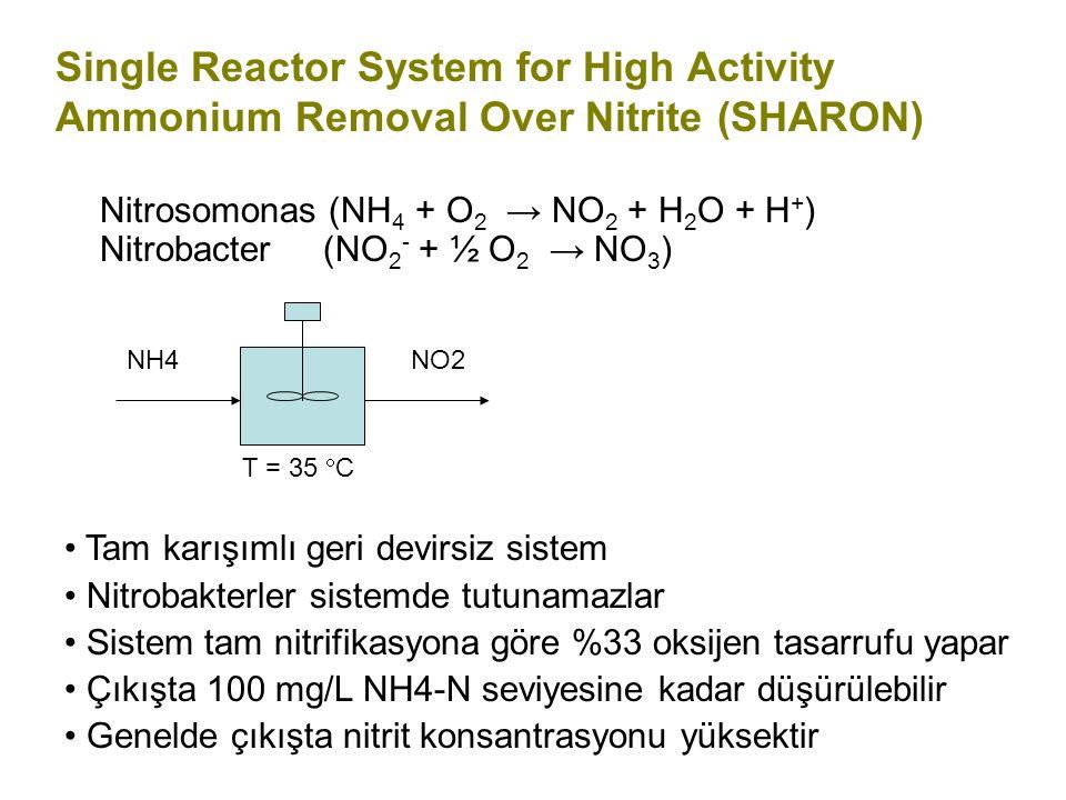 Single Reactor System for High Activity Ammonium Removal Over Nitrite (SHARON) Nitrosomonas (NH 4 + O 2 → NO 2 + H 2 O + H + ) Nitrobacter (NO 2 - + ½