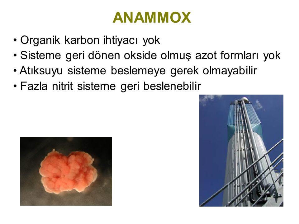 ANAMMOX Organik karbon ihtiyacı yok Sisteme geri dönen okside olmuş azot formları yok Atıksuyu sisteme beslemeye gerek olmayabilir Fazla nitrit sistem