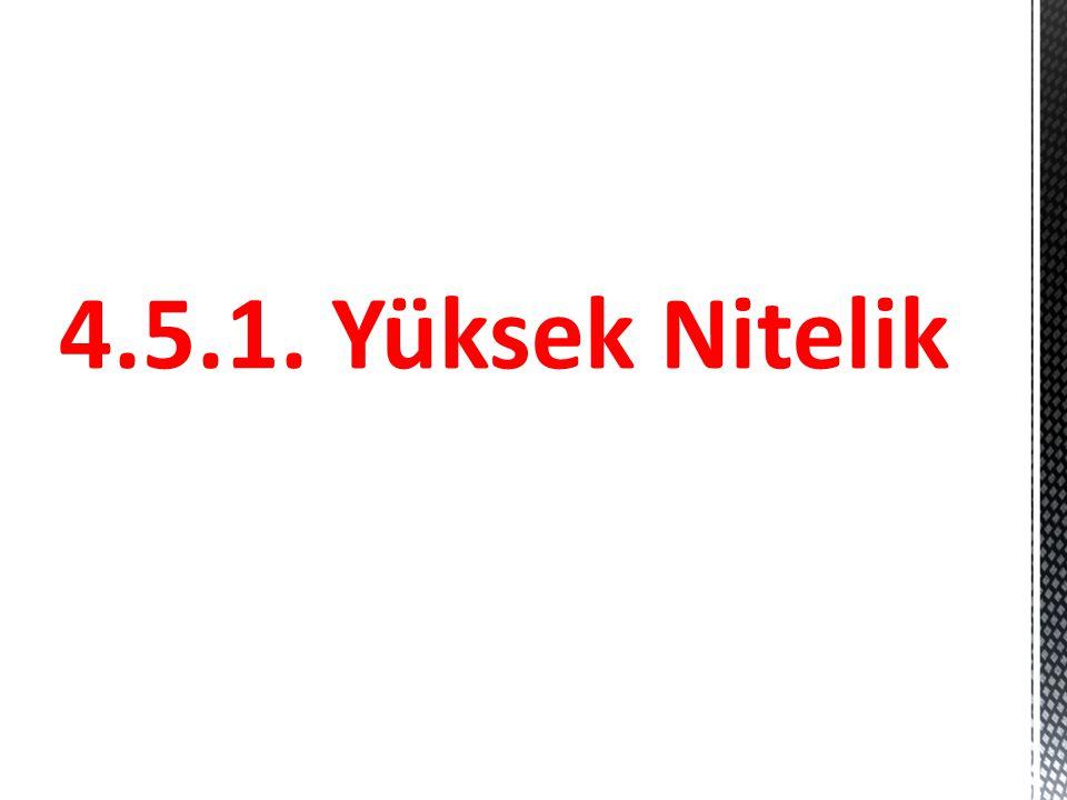 4.5.1. Yüksek Nitelik
