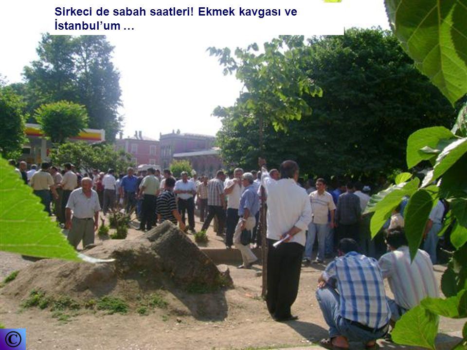 Cem Yurtsev cyurtsev@yahoo.com Fotoğraflar : Cem YURTSEV Bu sunu sanaldünya grubu için hazırlanmıştır. Gruba üyelik için email :