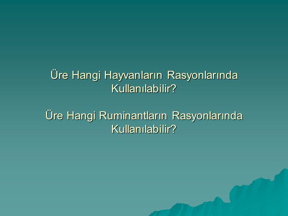 Üre Hangi Hayvanların Rasyonlarında Kullanılabilir? Üre Hangi Ruminantların Rasyonlarında Kullanılabilir?
