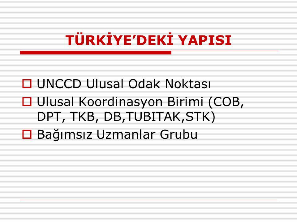 TÜRKİYE'DEKİ YAPISI  UNCCD Ulusal Odak Noktası  Ulusal Koordinasyon Birimi (COB, DPT, TKB, DB,TUBITAK,STK)  Bağımsız Uzmanlar Grubu