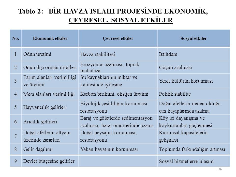 Tablo 2: BİR HAVZA ISLAHI PROJESİNDE EKONOMİK, ÇEVRESEL, SOSYAL ETKİLER No.Ekonomik etkilerÇevresel etkilerSosyal etkiler 1Odun üretimi Havza stabilit