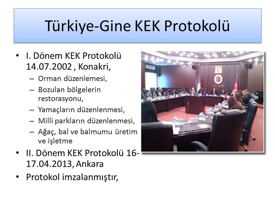 Türkiye-Gine KEK Protokolü I. Dönem KEK Protokolü 14.07.2002, Konakri, – Orman düzenlemesi, – Bozulan bölgelerin restorasyonu, – Yamaçların düzenlenme