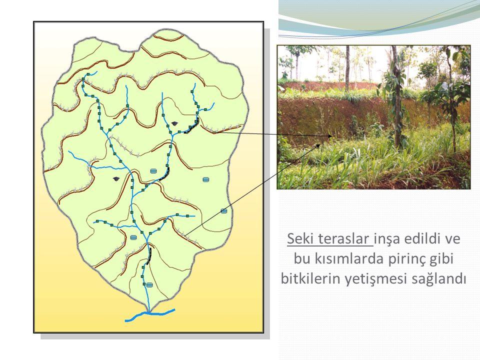 Seki teraslar inşa edildi ve bu kısımlarda pirinç gibi bitkilerin yetişmesi sağlandı