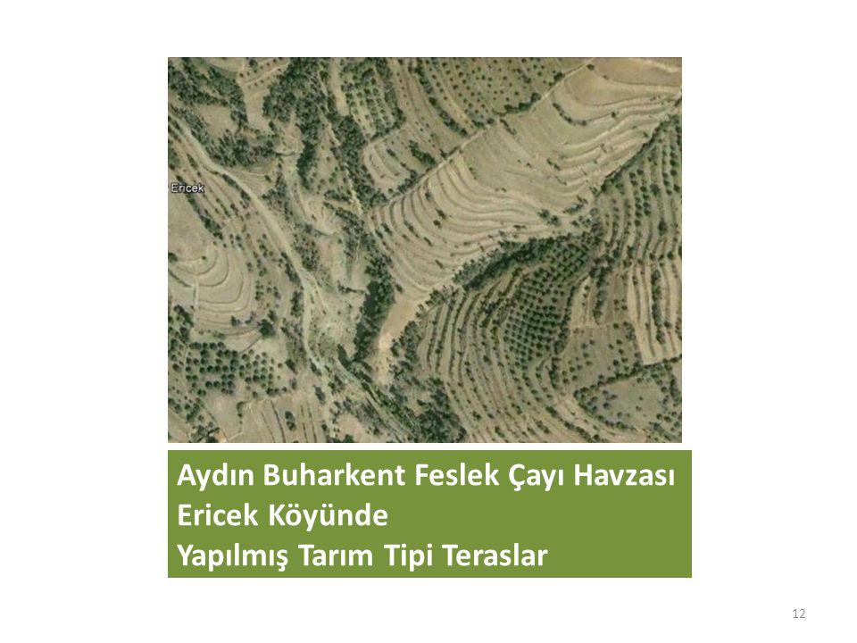 Aydın Buharkent Feslek Çayı Havzası Ericek Köyünde Yapılmış Tarım Tipi Teraslar 12