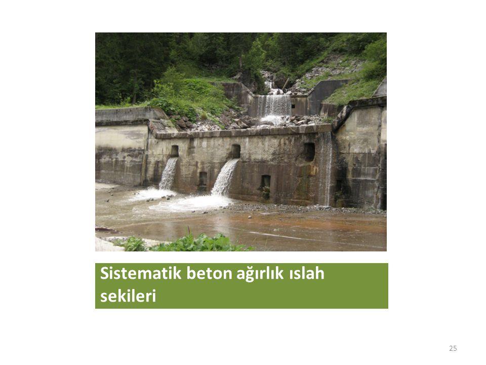 Sistematik beton ağırlık ıslah sekileri 25