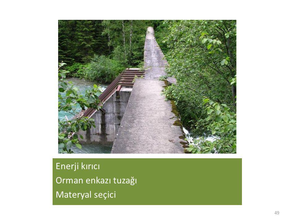 Enerji kırıcı Orman enkazı tuzağı Materyal seçici 49