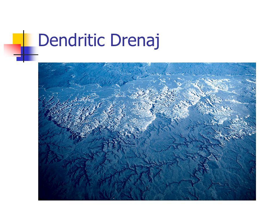 Dendritic Drenaj