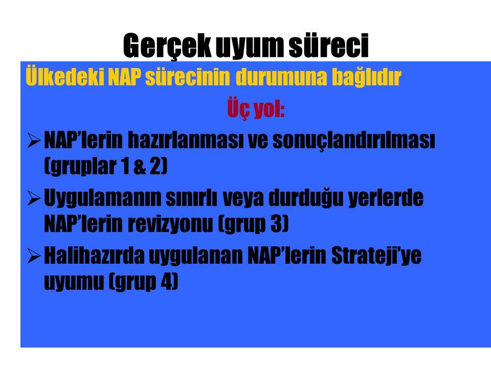 Gerçek uyum süreci Ülkedeki NAP sürecinin durumuna bağlıdır Üç yol:  NAP'lerin hazırlanması ve sonuçlandırılması (gruplar 1 & 2)  Uygulamanın sınırlı veya durduğu yerlerde NAP'lerin revizyonu (grup 3)  Halihazırda uygulanan NAP'lerin Strateji'ye uyumu (grup 4)