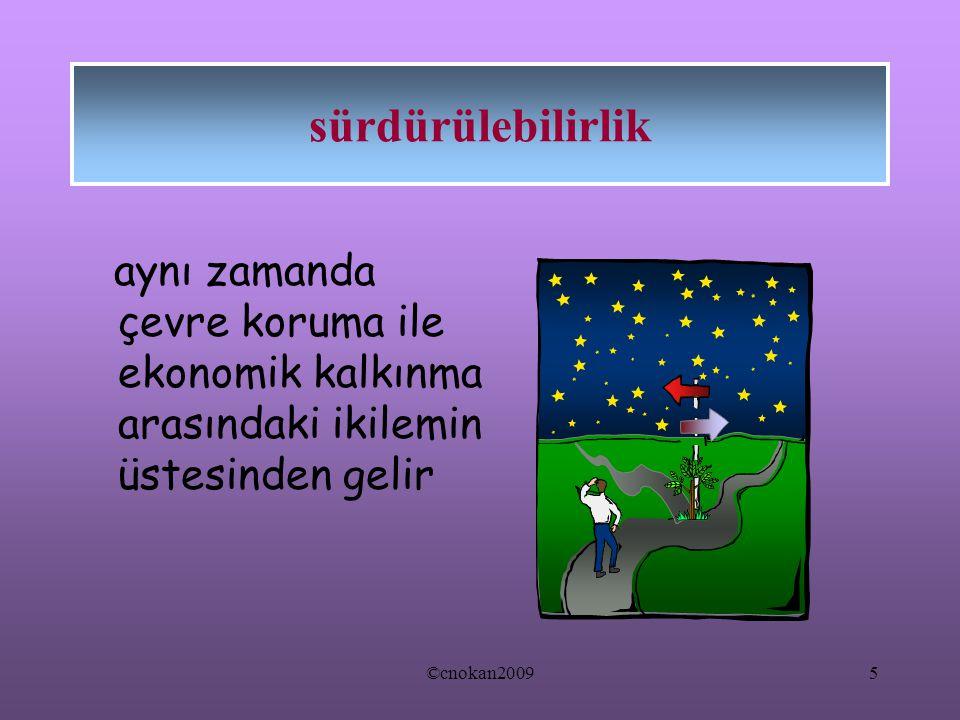 aynı zamanda çevre koruma ile ekonomik kalkınma arasındaki ikilemin üstesinden gelir sürdürülebilirlik 5©cnokan2009