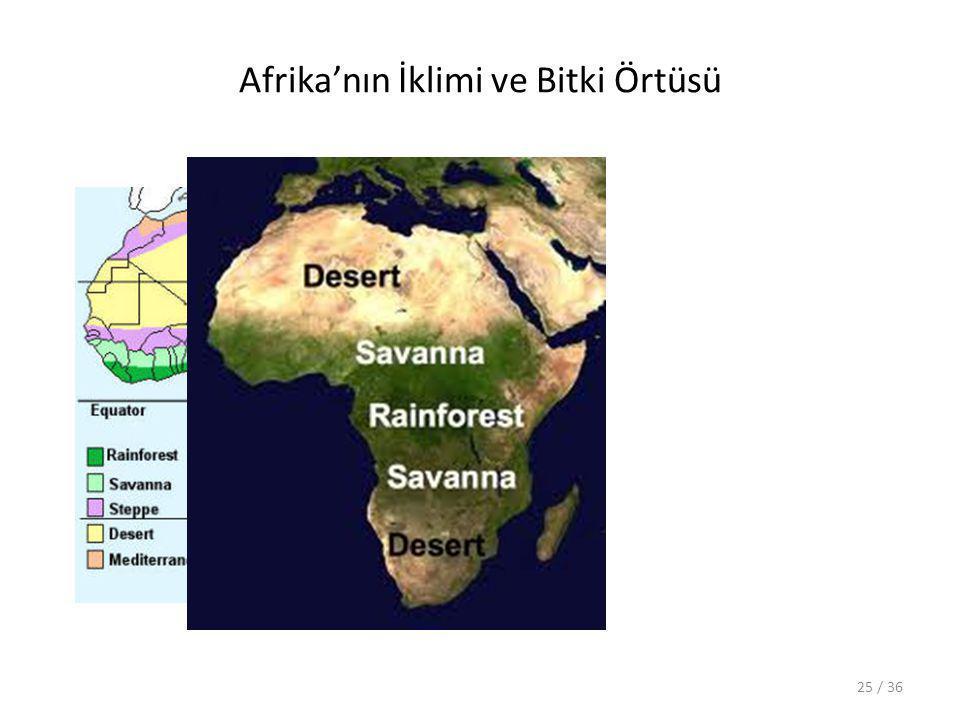Afrika'nın İklimi ve Bitki Örtüsü 25 / 36