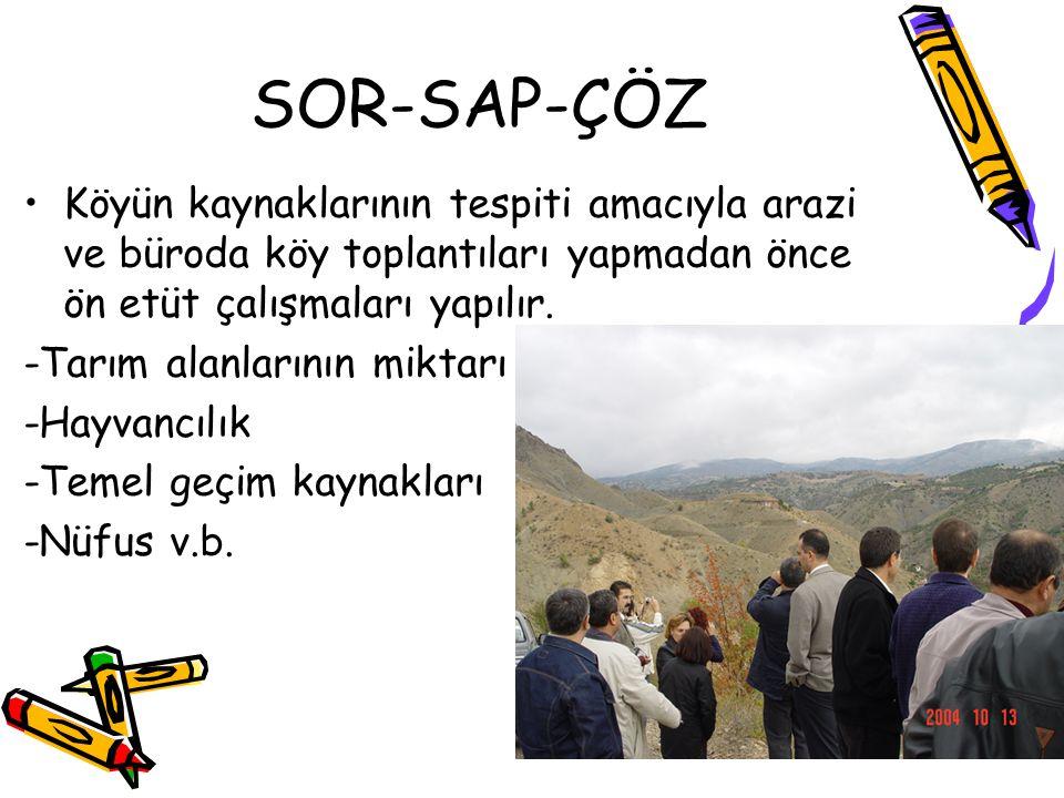 SOR-SAP-ÇÖZ Köyün kaynaklarının tespiti amacıyla arazi ve büroda köy toplantıları yapmadan önce ön etüt çalışmaları yapılır. -Tarım alanlarının miktar