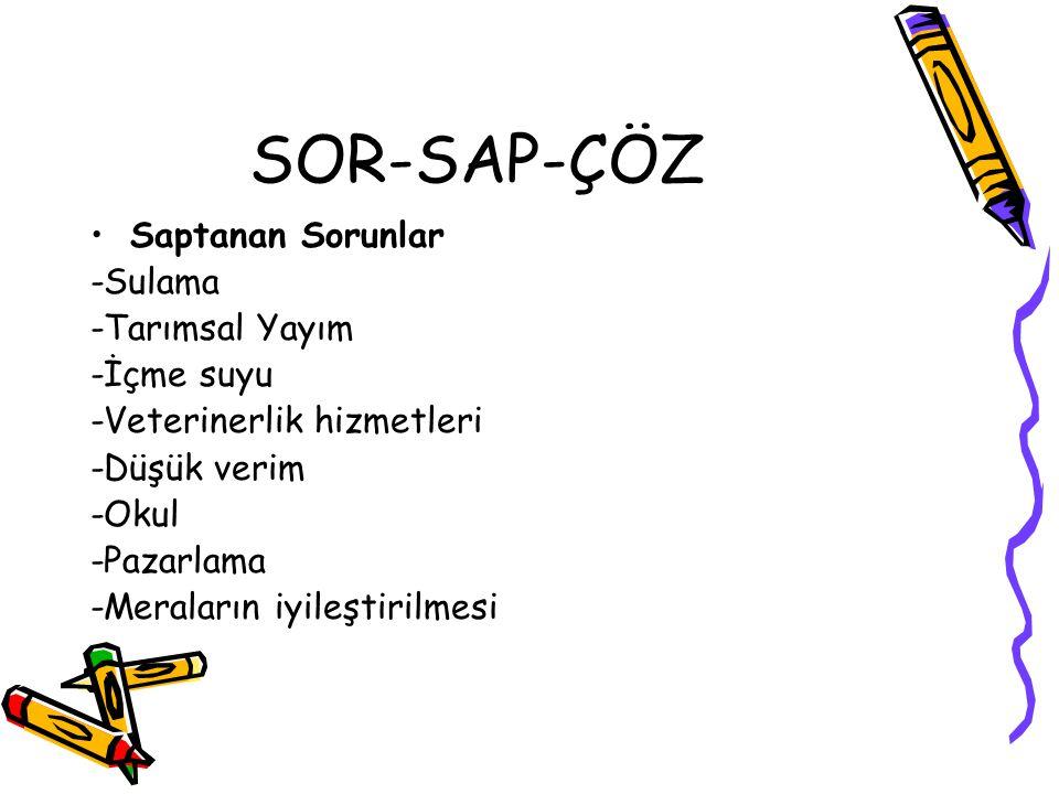 SOR-SAP-ÇÖZ Sorunlar Çözümler -Sulama -Tarımsal Yayım -İçme suyu -Veterinerlik hizmetleri -Düşük verim -Okul -Pazarlama -Meraların iyileştirilmesi Projedeki çözümler yazılacak