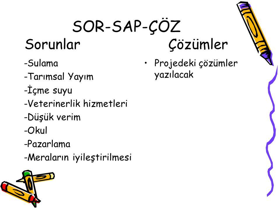 SOR-SAP-ÇÖZ Sorunlar Çözümler -Sulama -Tarımsal Yayım -İçme suyu -Veterinerlik hizmetleri -Düşük verim -Okul -Pazarlama -Meraların iyileştirilmesi Pro