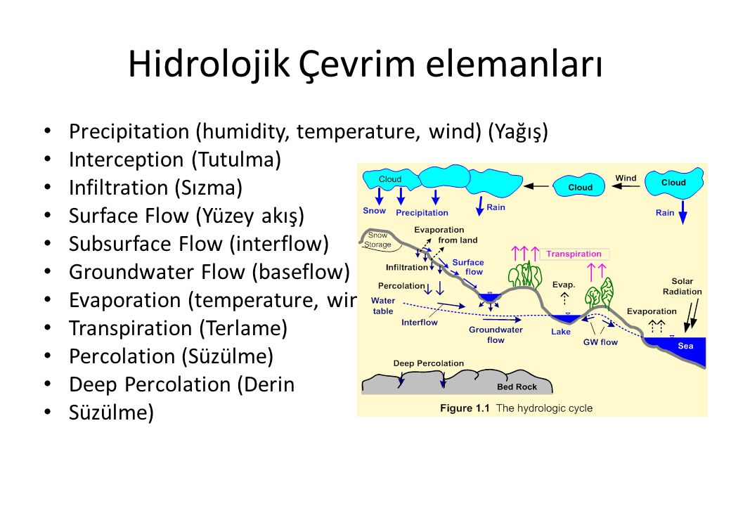 Hidrolojik Çevrim elemanları Precipitation (humidity, temperature, wind) (Yağış) Interception (Tutulma) Infiltration (Sızma) Surface Flow (Yüzey akış)