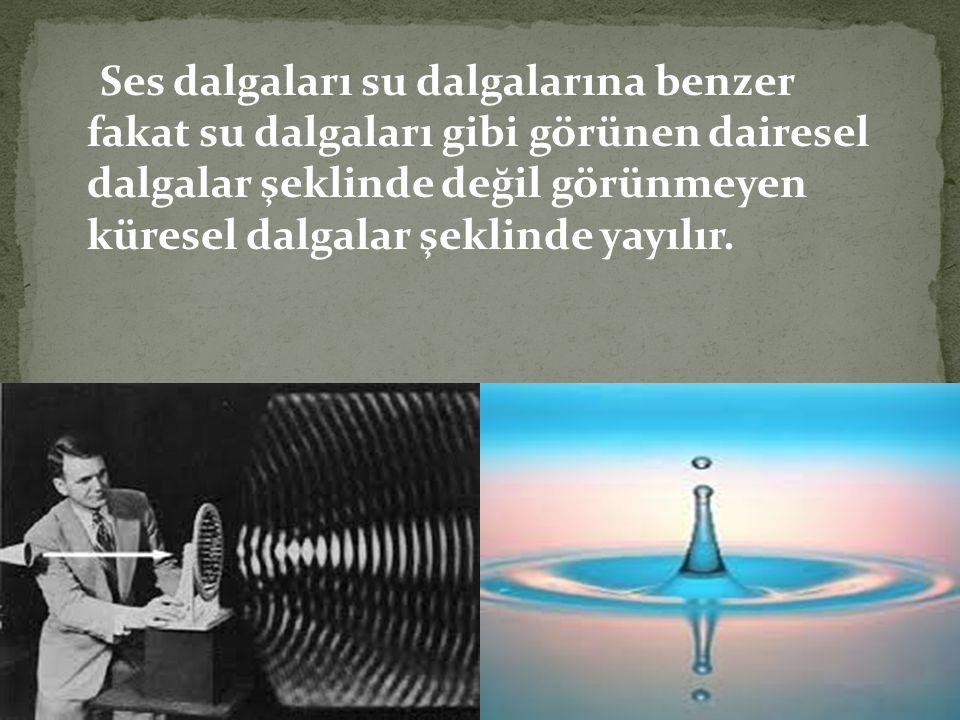 Ses dalgaları su dalgalarına benzer fakat su dalgaları gibi görünen dairesel dalgalar şeklinde değil görünmeyen küresel dalgalar şeklinde yayılır.
