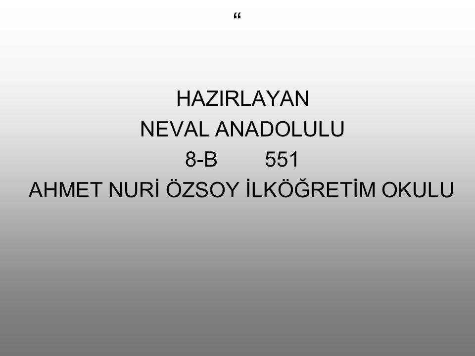 """"""" HAZIRLAYAN NEVAL ANADOLULU 8-B 551 AHMET NURİ ÖZSOY İLKÖĞRETİM OKULU"""