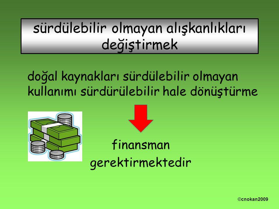 doğal kaynakları sürdülebilir olmayan kullanımı sürdürülebilir hale dönüştürme finansman gerektirmektedir sürdülebilir olmayan alışkanlıkları değiştirmek ©cnokan2009