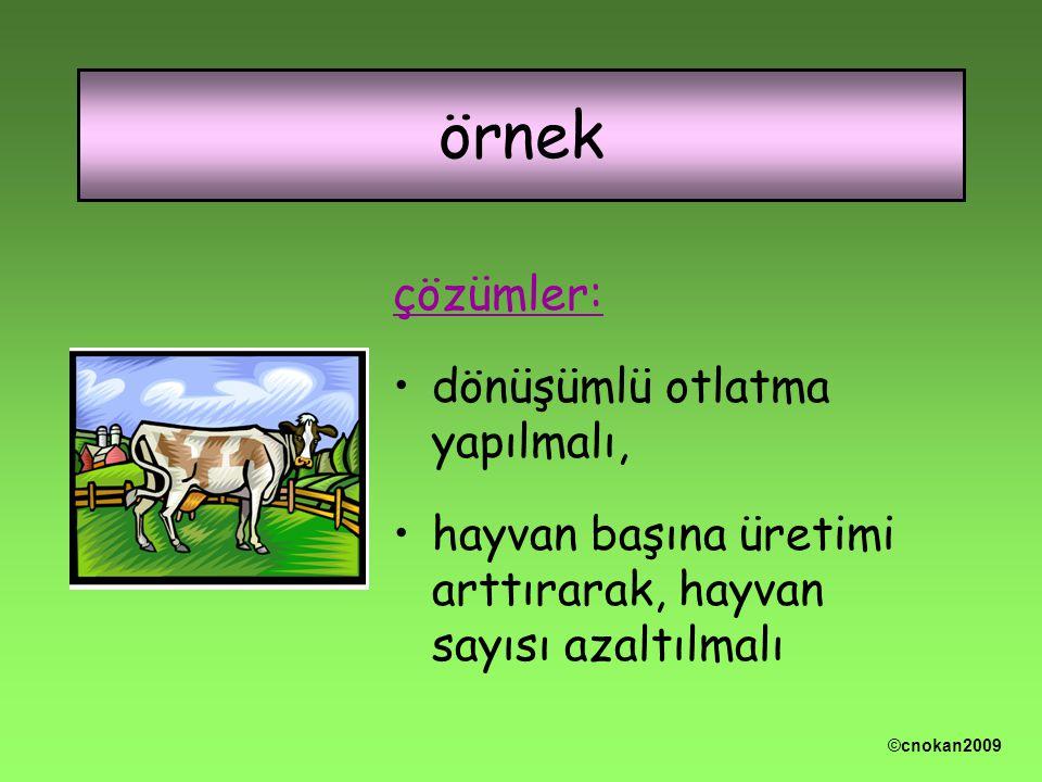 çözümler: dönüşümlü otlatma yapılmalı, hayvan başına üretimi arttırarak, hayvan sayısı azaltılmalı örnek ©cnokan2009