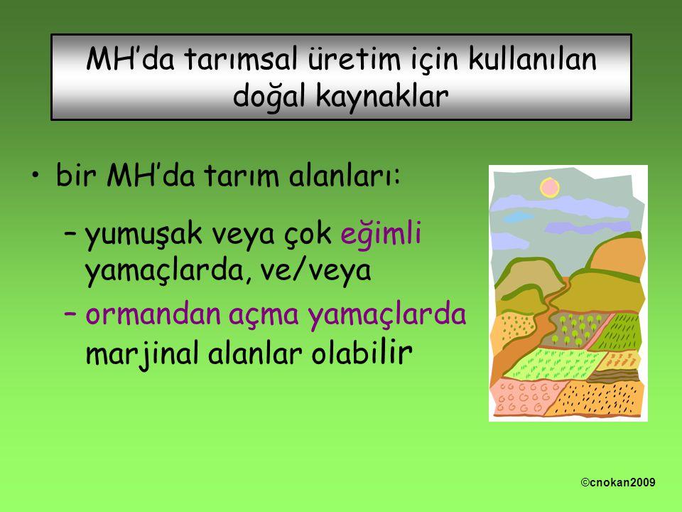 MH'da tarımsal üretim için kullanılan doğal kaynaklar bir MH'da tarım alanları: –yumuşak veya çok eğimli yamaçlarda, ve/veya –ormandan açma yamaçlarda marjinal alanlar olabi lir ©cnokan2009