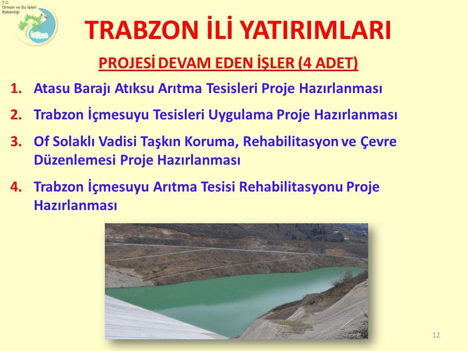 1.Atasu Barajı Atıksu Arıtma Tesisleri Proje Hazırlanması 2.Trabzon İçmesuyu Tesisleri Uygulama Proje Hazırlanması 3.Of Solaklı Vadisi Taşkın Koruma, Rehabilitasyon ve Çevre Düzenlemesi Proje Hazırlanması 4.Trabzon İçmesuyu Arıtma Tesisi Rehabilitasyonu Proje Hazırlanması PROJESİ DEVAM EDEN İŞLER (4 ADET) TRABZON İLİ YATIRIMLARI 12