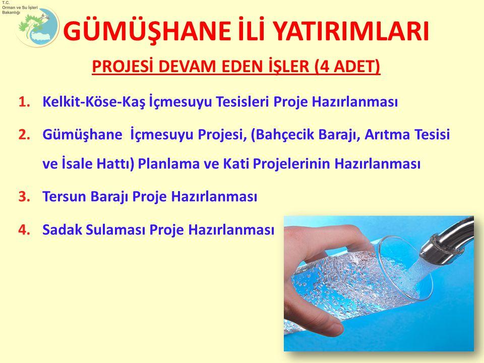 1.Kelkit-Köse-Kaş İçmesuyu Tesisleri Proje Hazırlanması 2.Gümüşhane İçmesuyu Projesi, (Bahçecik Barajı, Arıtma Tesisi ve İsale Hattı) Planlama ve Kati