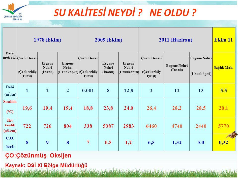 SU KALİTESİ NEYDİ ? NE OLDU ? Para metreler 1978 (Ekim)2009 (Ekim)2011 (Haziran)Ekim 11 Çorlu Deresi Ergene Nehri (İnanlı) Ergene Nehri (Uzunköprü) Ço