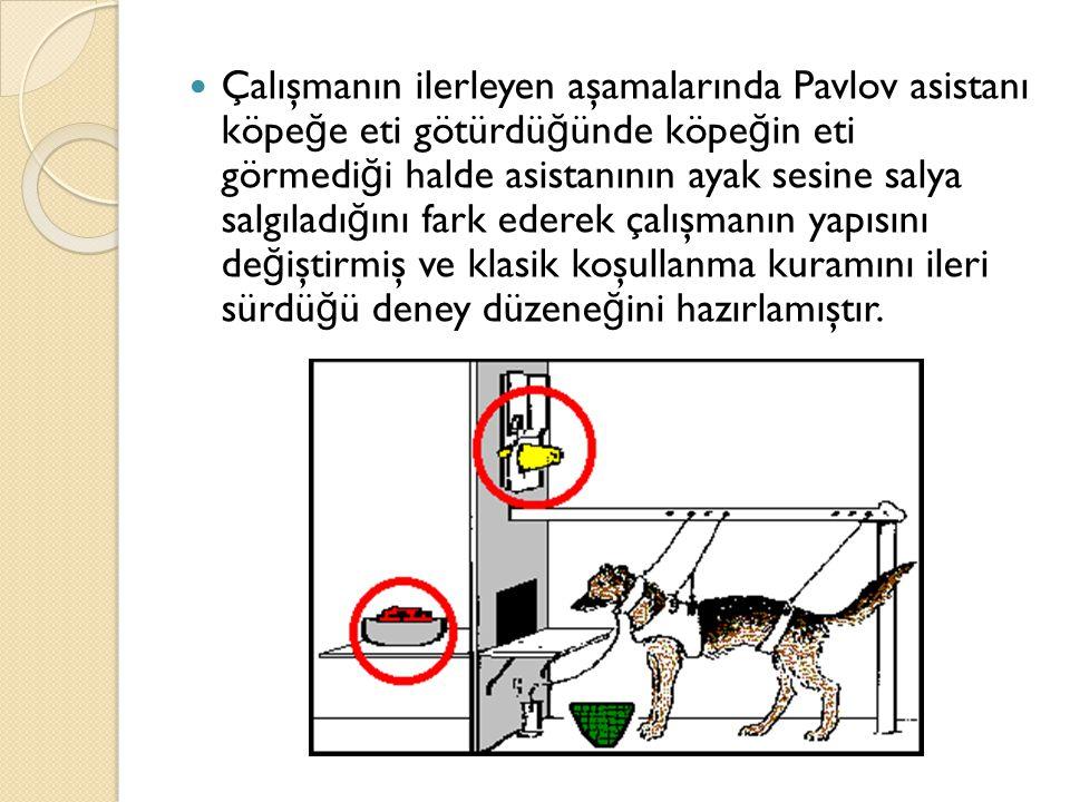 Çalışmanın ilerleyen aşamalarında Pavlov asistanı köpe ğ e eti götürdü ğ ünde köpe ğ in eti görmedi ğ i halde asistanının ayak sesine salya salgıladı