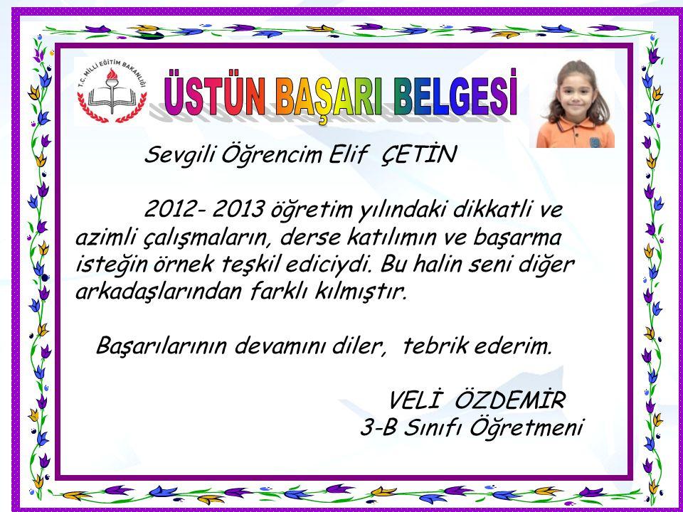 Sevgili Öğrencim Elif ÇETİN 2012- 2013 öğretim yılındaki dikkatli ve azimli çalışmaların, derse katılımın ve başarma isteğin örnek teşkil ediciydi.