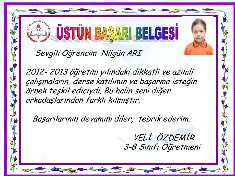 Sevgili Öğrencim Nilgün ARI 2012- 2013 öğretim yılındaki dikkatli ve azimli çalışmaların, derse katılımın ve başarma isteğin örnek teşkil ediciydi.