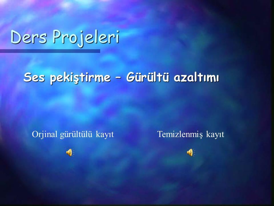 . Listen Ders Projeleri Echo Cancellation