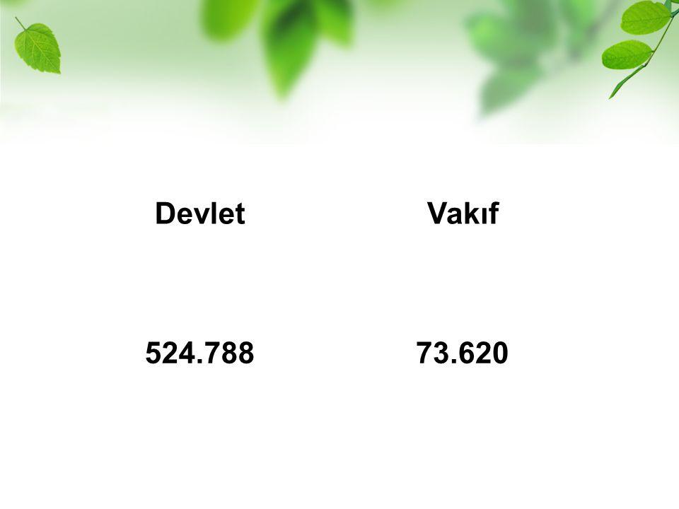 DevletVakıf 524.78873.620