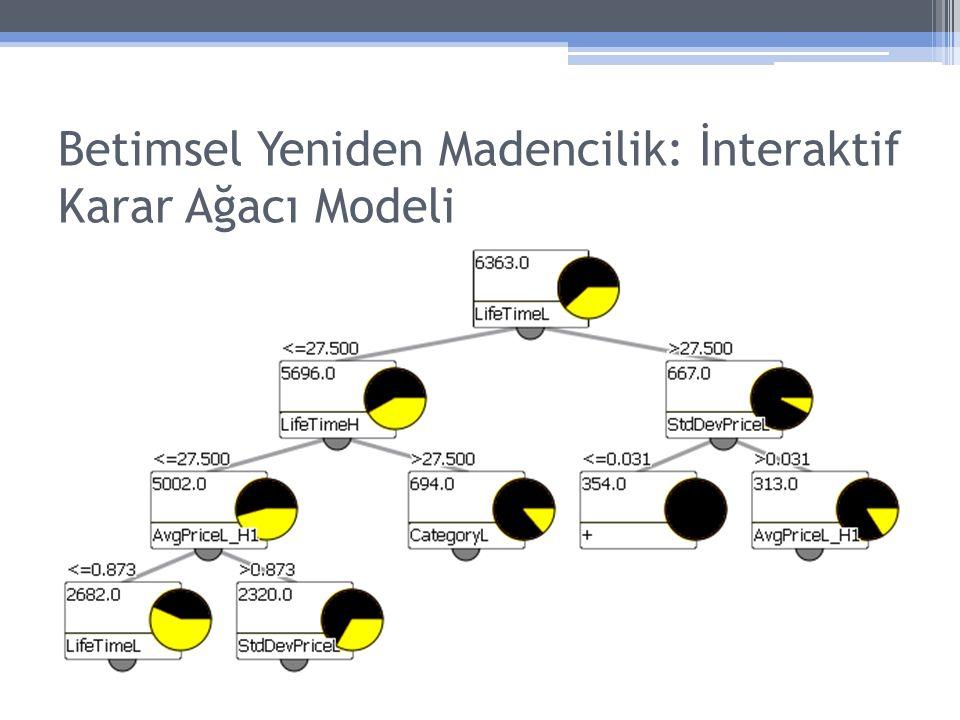 Betimsel Yeniden Madencilik: İnteraktif Karar Ağacı Modeli
