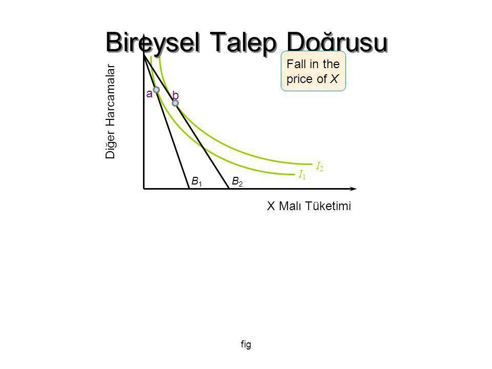 fig I2I2 Bireysel Talep Doğrusu B1B1 B2B2 I1I1 Diğer Harcamalar X Malı Tüketimi a b Fall in the price of X