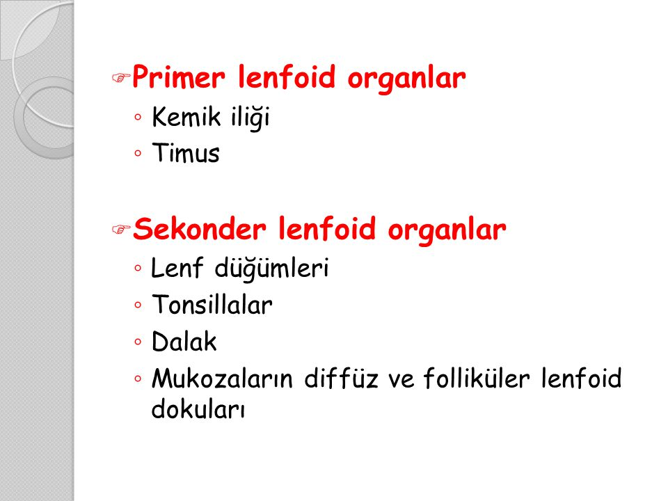  Primer lenfoid organlar ◦ Kemik iliği ◦ Timus  Sekonder lenfoid organlar ◦ Lenf düğümleri ◦ Tonsillalar ◦ Dalak ◦ Mukozaların diffüz ve folliküler