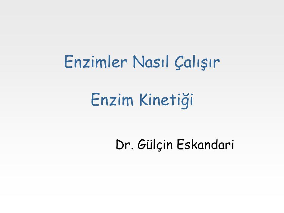 Enzimler Nasıl Çalışır Enzim Kinetiği Dr. Gülçin Eskandari