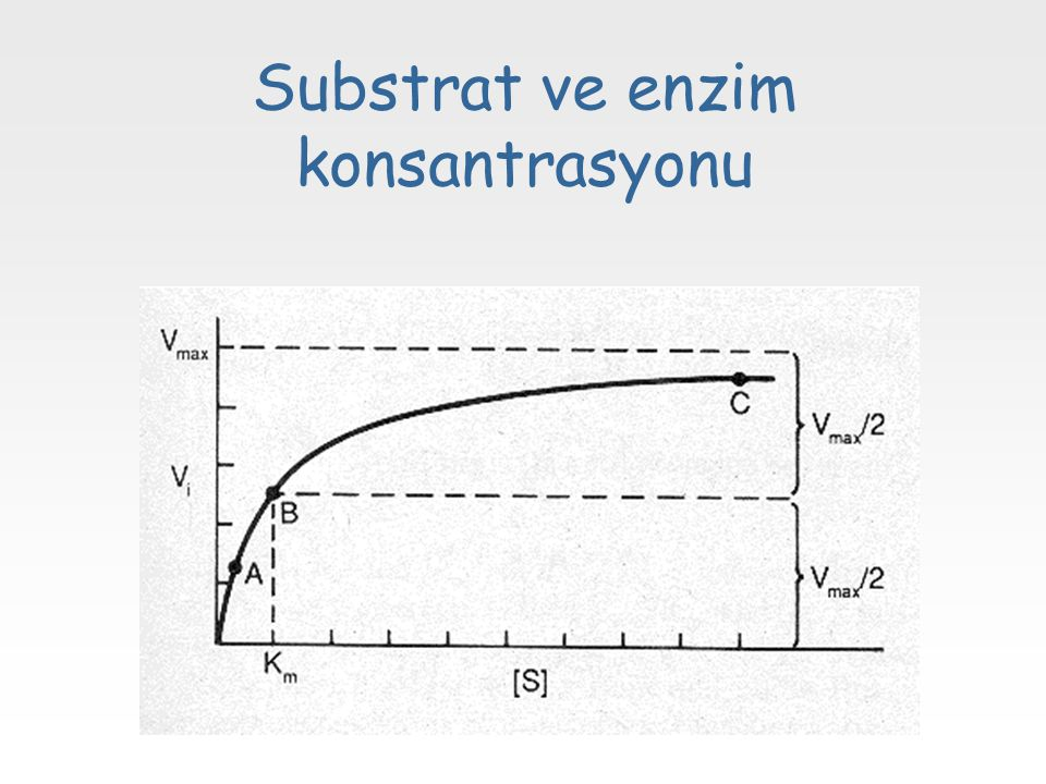 Substrat ve enzim konsantrasyonu