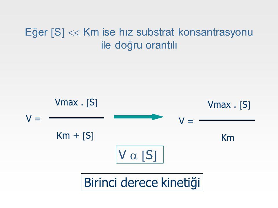 Eğer  S   Km ise hız substrat konsantrasyonu ile doğru orantılı Vmax.