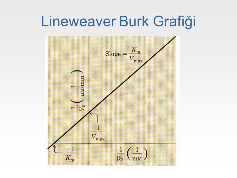Lineweaver Burk Grafiği