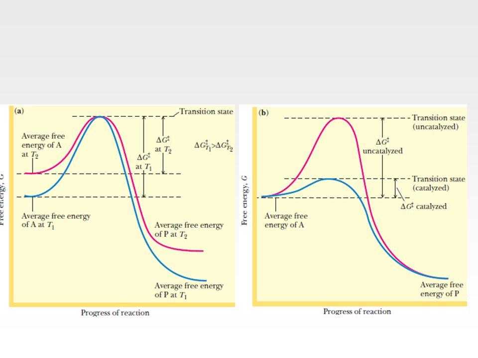 Unkompetetif İnhibisyon İnhibitör yine substartın bağlandığı bölgeden farklı bir yere bağlanır Ancak unkompetetif inhibisyonda inhibitör madde ancak ES kompleksi oluştuktan sonra enzime bağlanabilir Unkompetetif inhibisyonda kinetik açıdan değişen nedir.