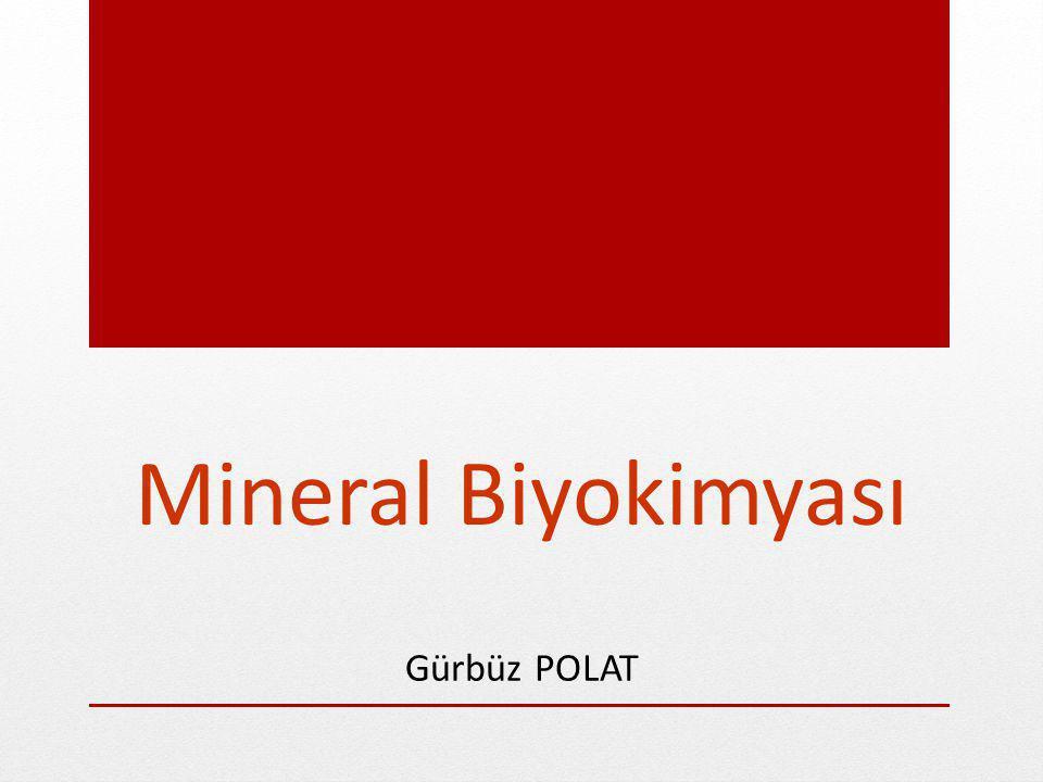 Büyüme için gerekli mineraller Kalsiyum Fosfor Magnezyum Demir