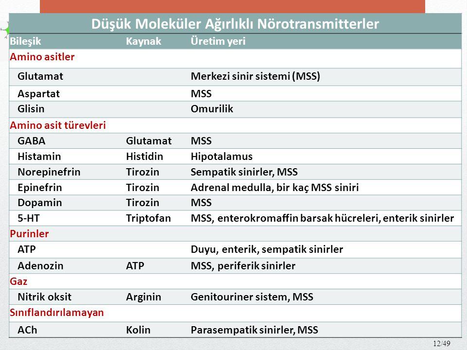 Otonomik sinir sistemi transmitterleri 13/49