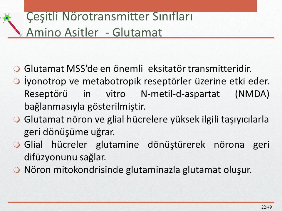 The NMDA glutamat reseptörü 23/49  Birçok düzenleyici bağlama bölgesi içerir.