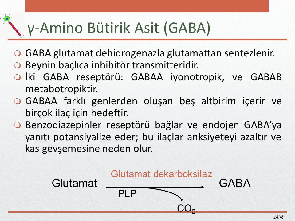 Glisin  Glisin primer olarak spinal kordun inhibitör internöronlarında bulunur.