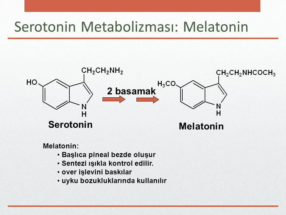Serotonin Metabolizması: Melatonin 2 basamak Serotonin Melatonin Melatonin: Başlıca pineal bezde oluşur Sentezi ışıkla kontrol edilir.