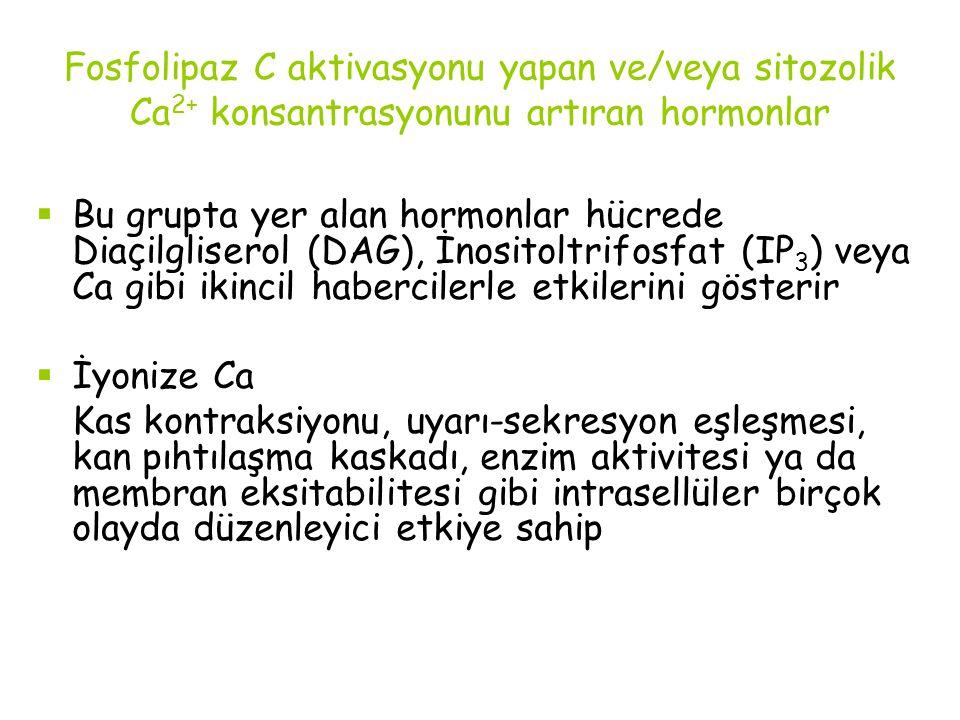 Fosfolipaz C aktivasyonu yapan ve/veya sitozolik Ca 2+ konsantrasyonunu artıran hormonlar  Bu grupta yer alan hormonlar hücrede Diaçilgliserol (DAG),