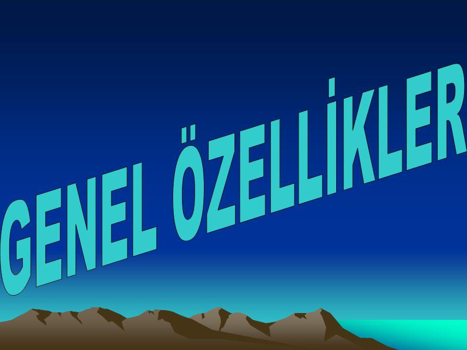 DOLAŞIM SİSTEMLERİ NASILDIR.