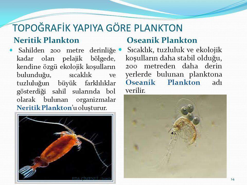 TOPOĞRAFİK YAPIYA GÖRE PLANKTON Neritik PlanktonOseanik Plankton Sahilden 200 metre derinliğe kadar olan pelajik bölgede, kendine özgü ekolojik koşull